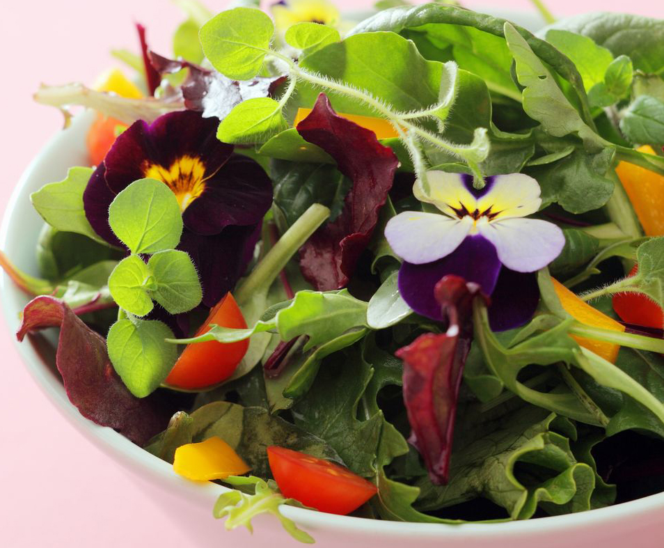 Flowers that you can safely eat