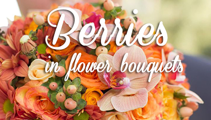 Suitable Berries For Use In Flower Bouquets