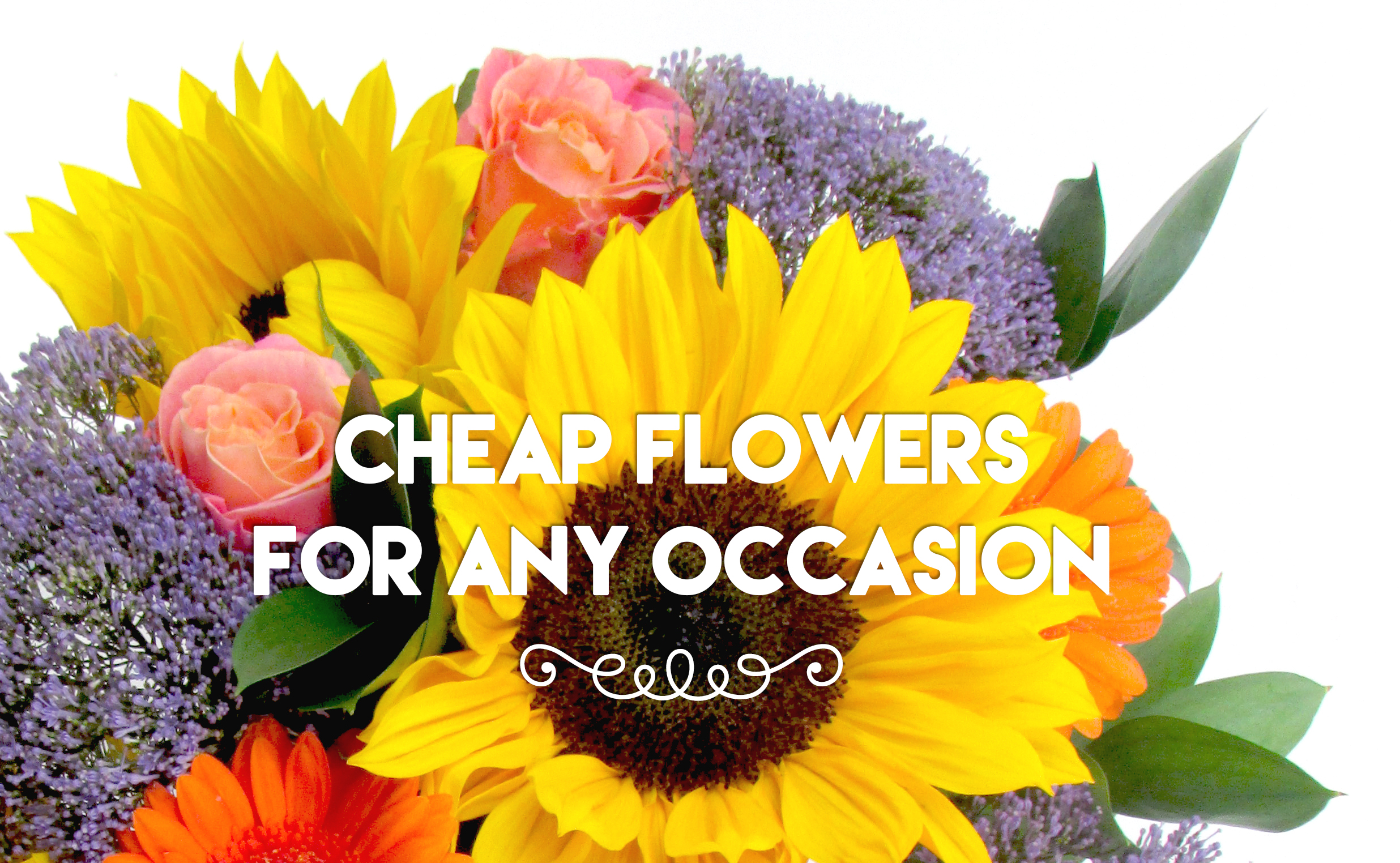 Cheap Flowers For Any Occasion