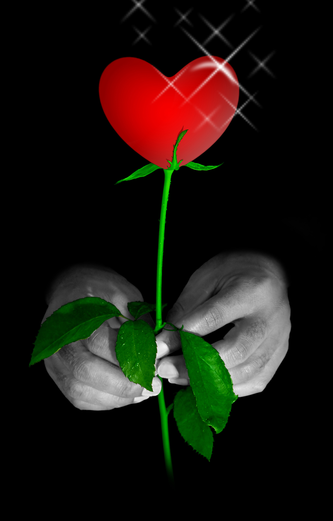 Sending memorable and meaningful Valentine's Day flowers
