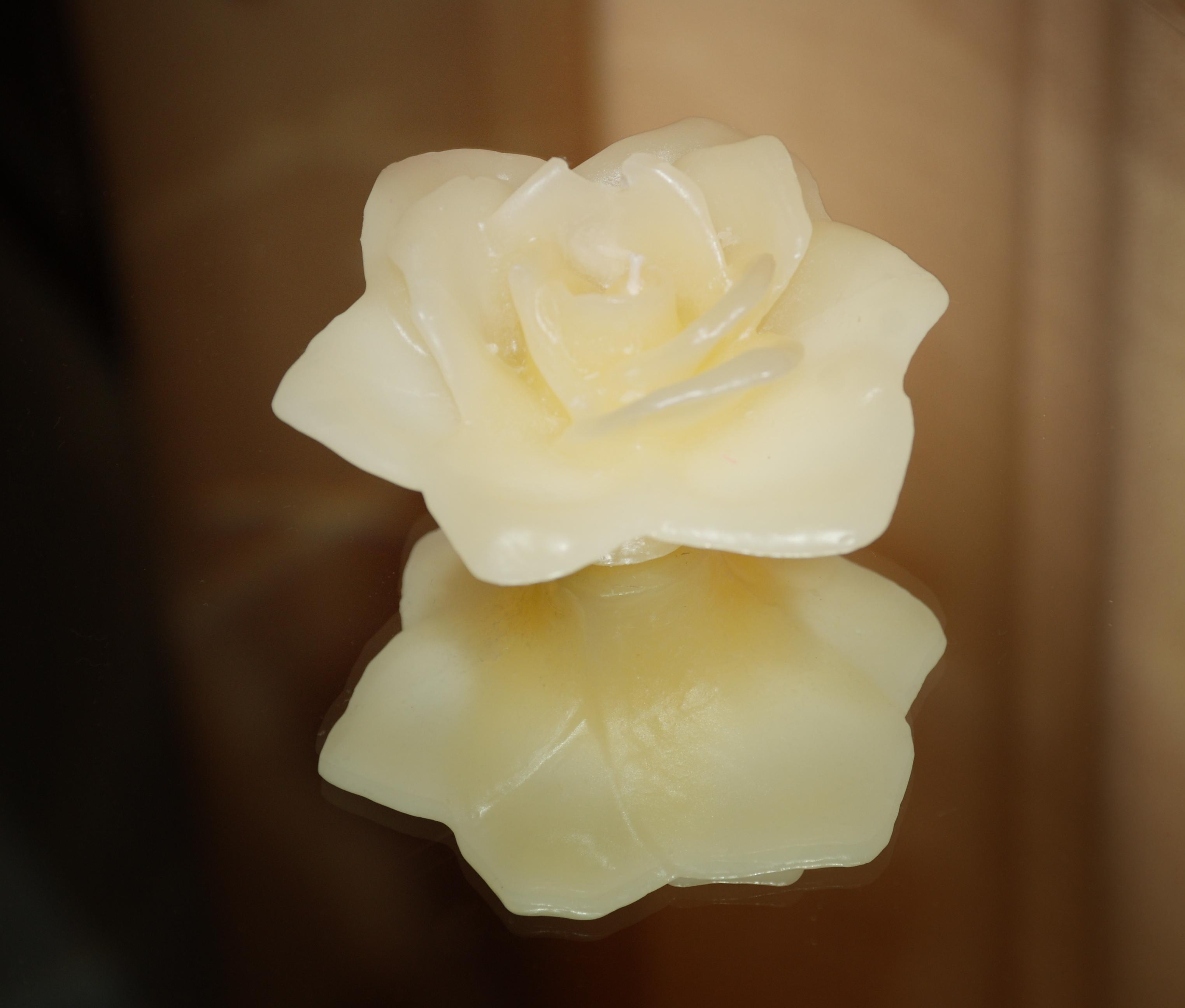 Making your own wax flowers