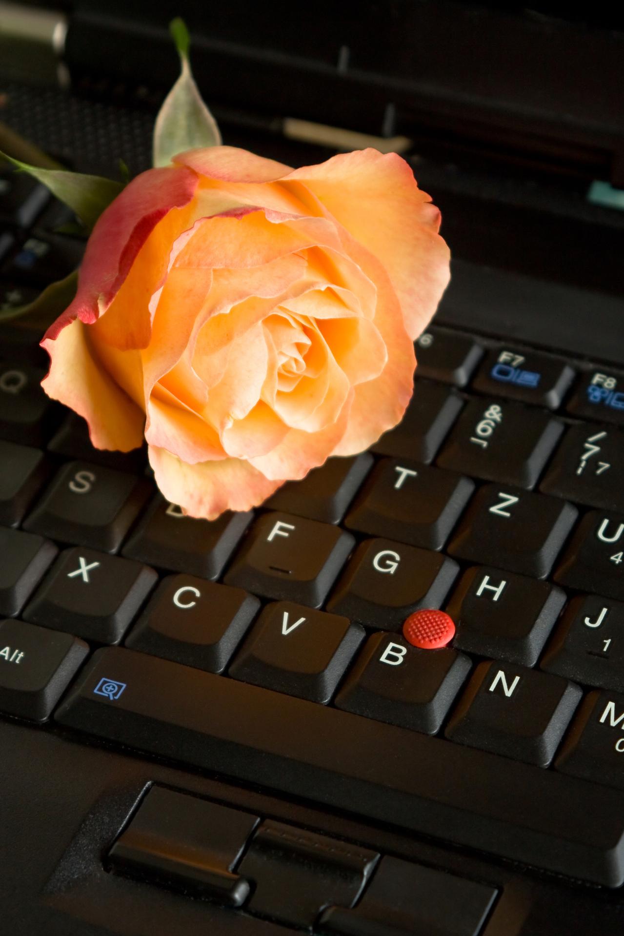 Expert tips for sending the best flowers online