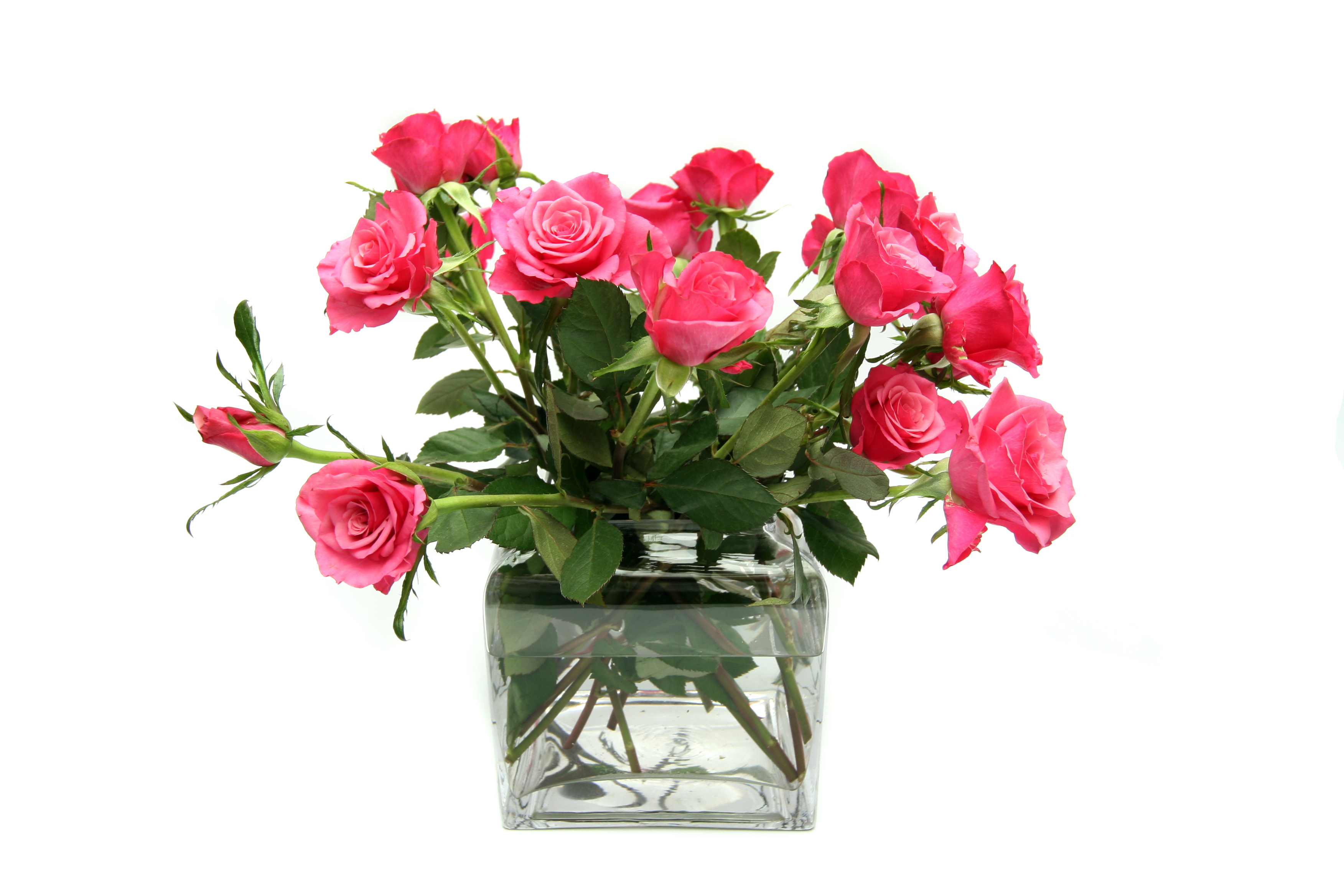 Choose the best florist for Valentine's Day flowers