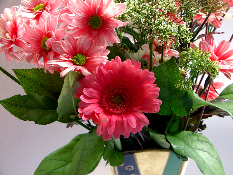 Mother's Day flowers for your mum-in-law