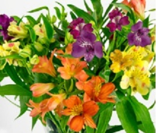 3 things to avoid if you want your cut flowers to last