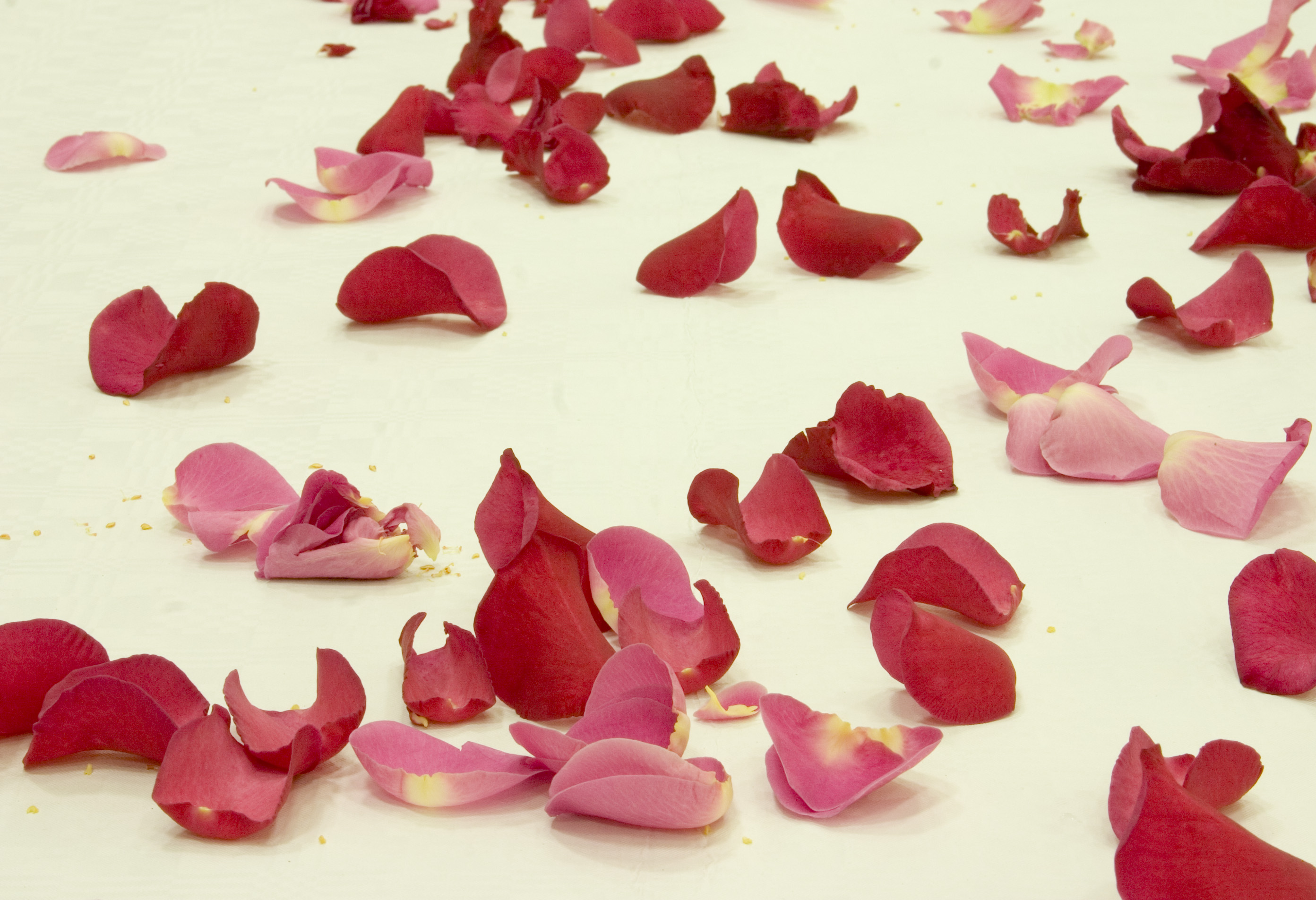 Make your very own rose petal jam