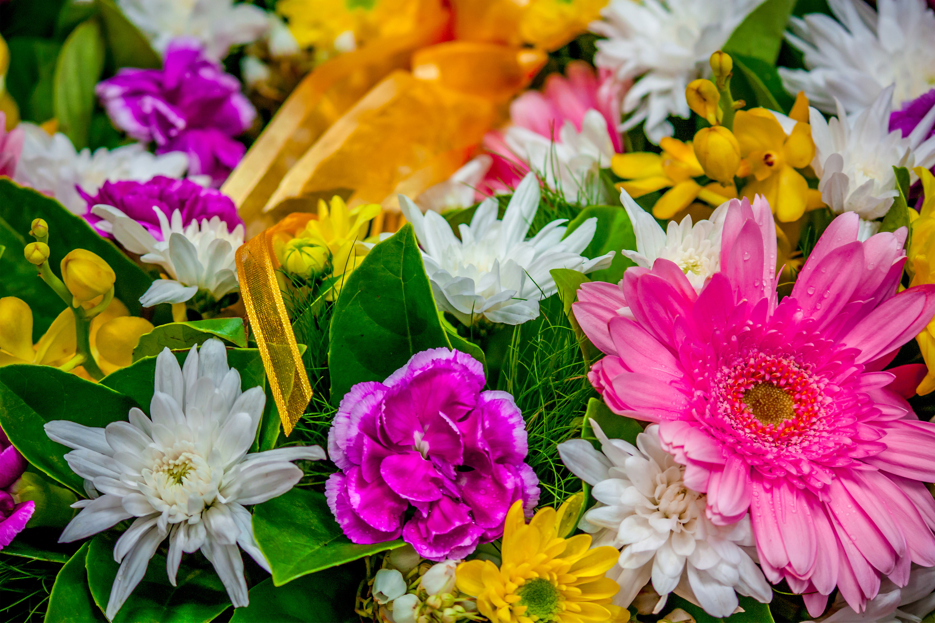 Online florists save you money
