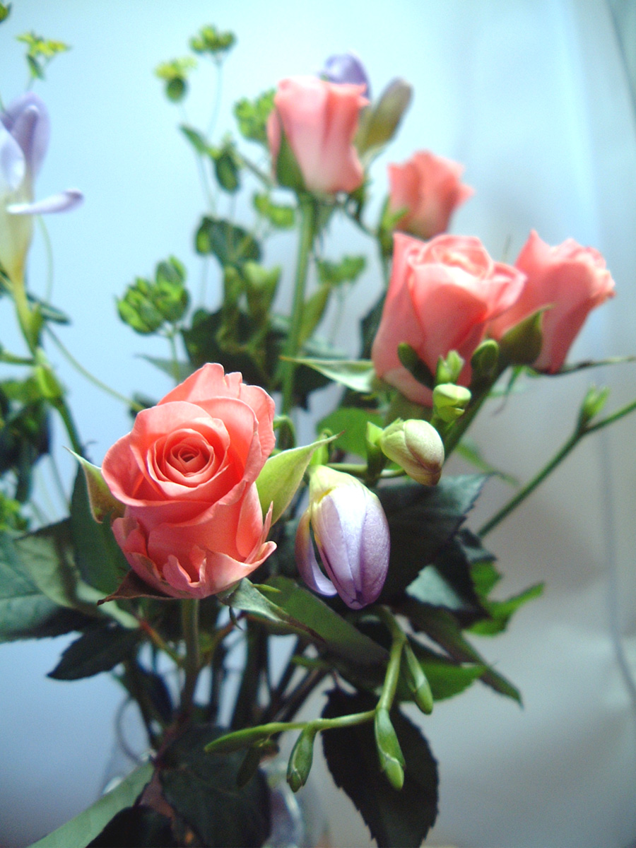 Tips to help you find the right florist