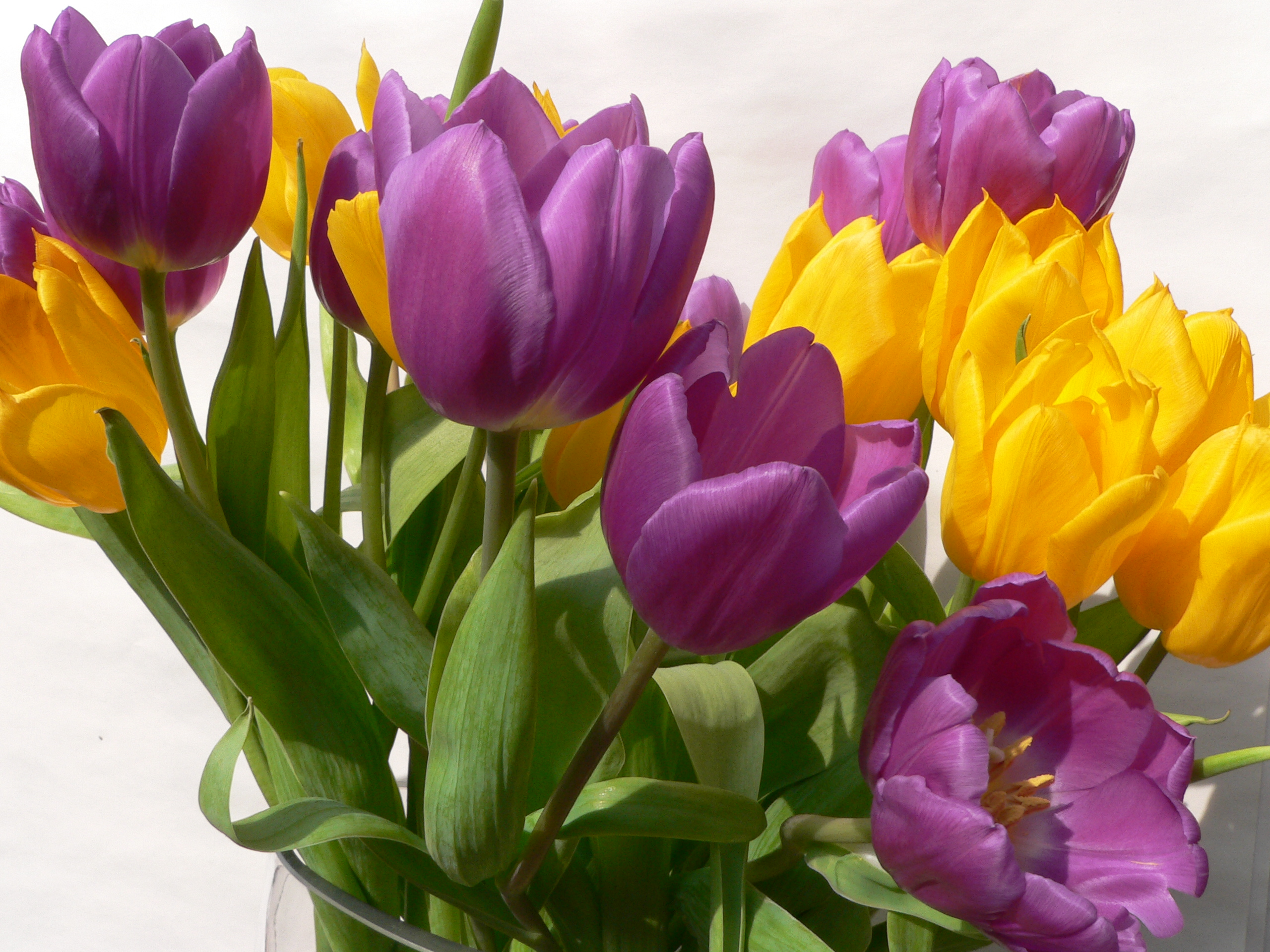 Why is colour important when it comes to floral designs