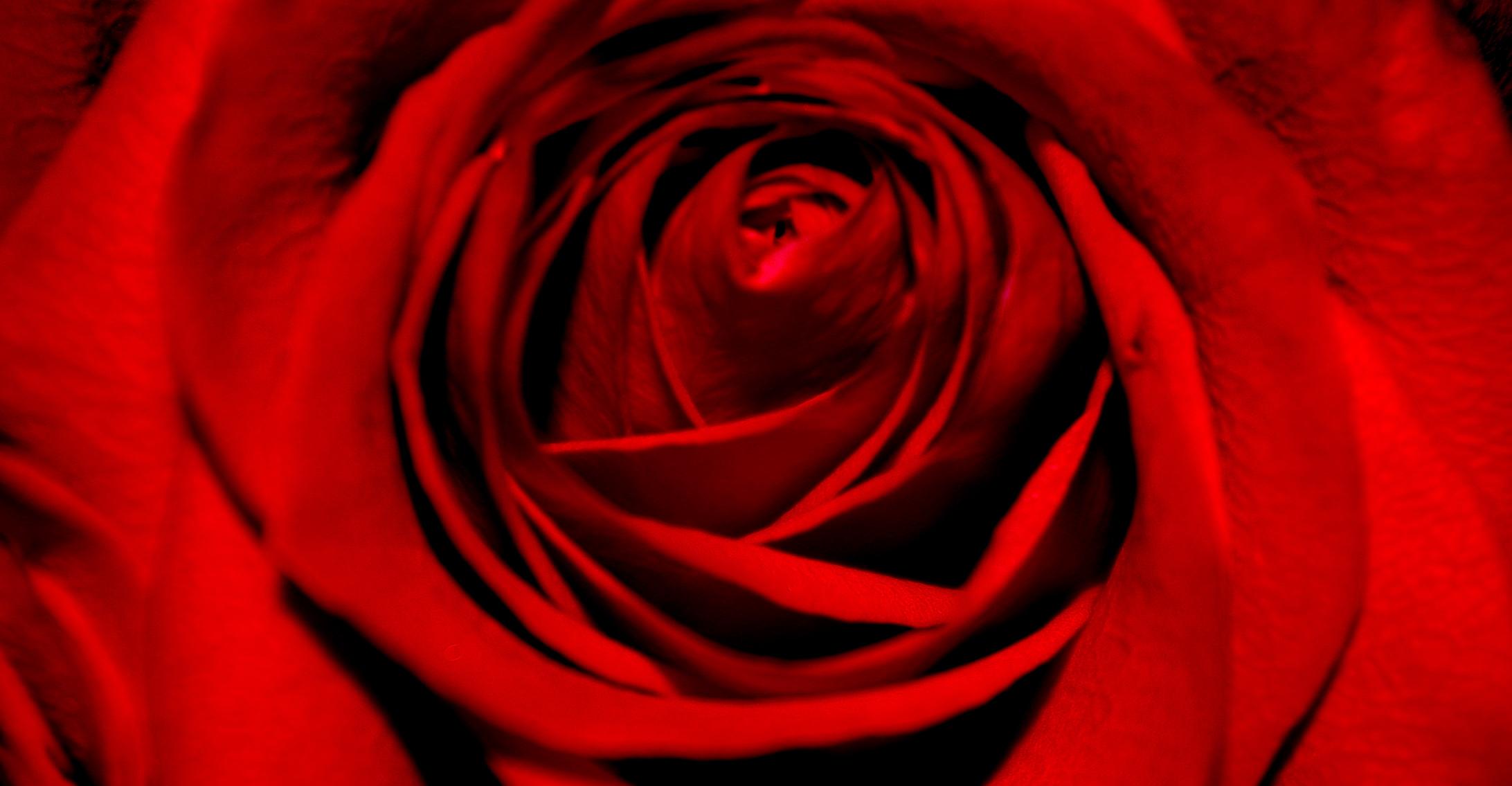 Arranging a romantic bouquet