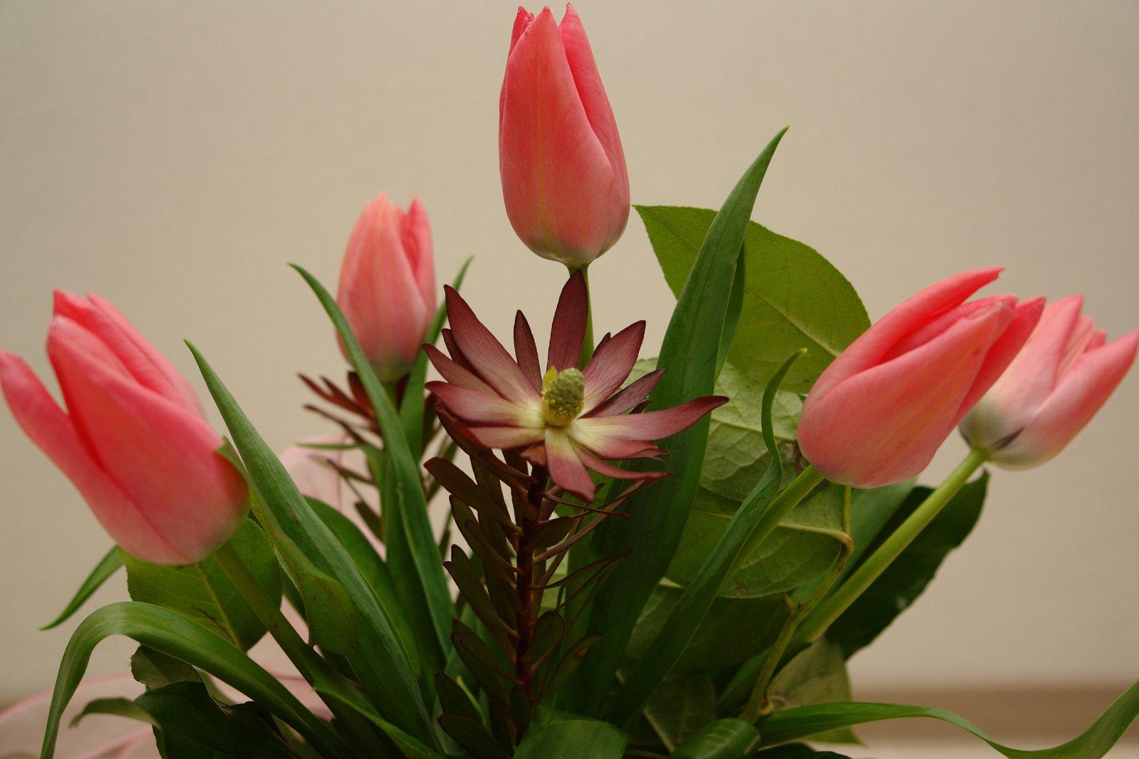 International flower deliveries