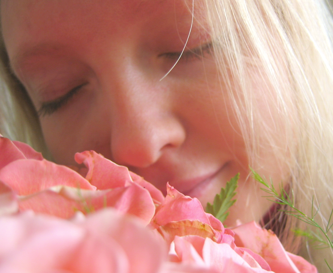 Fresh-smelling flowers to improve your mood