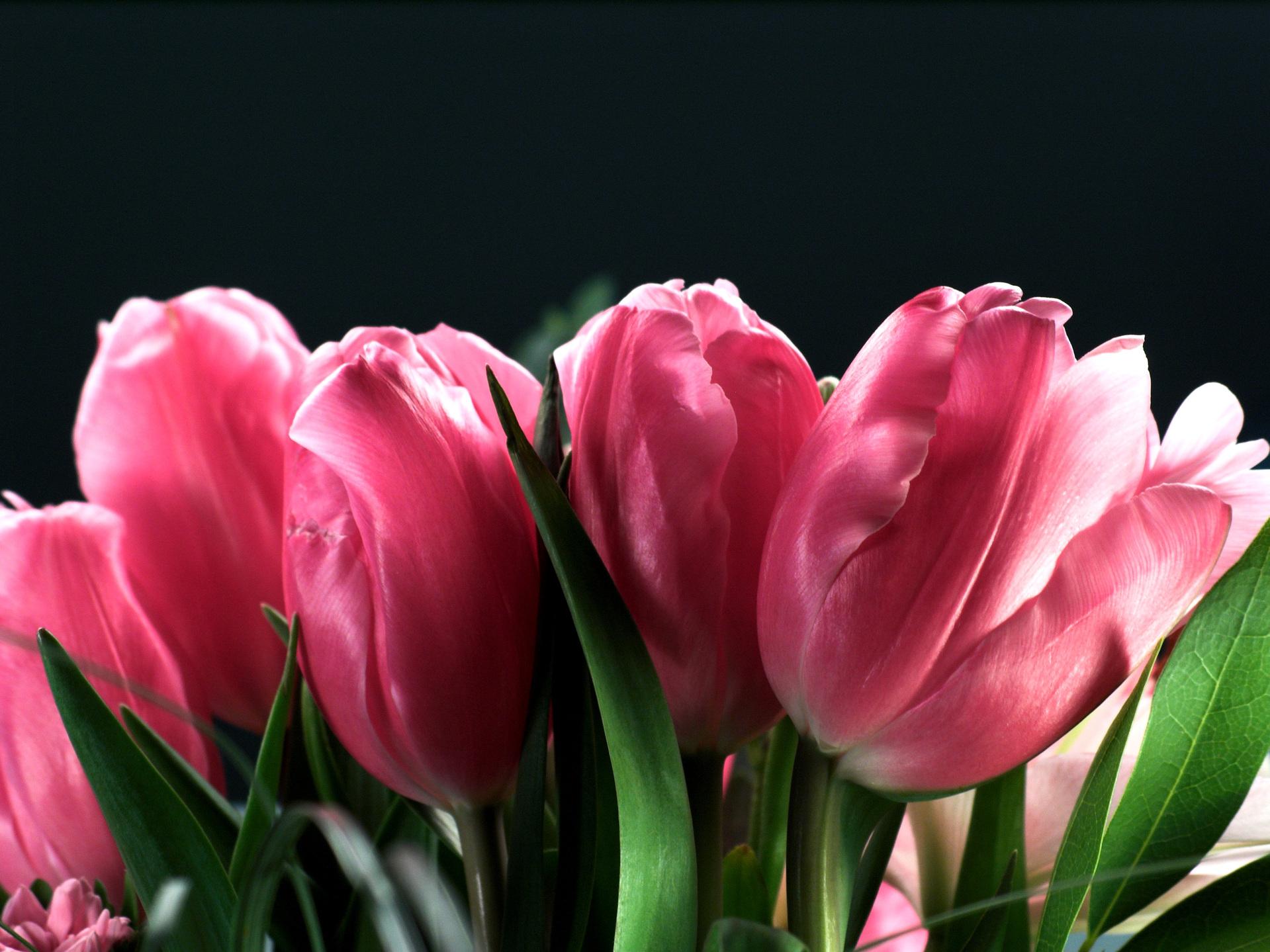 Flower sending guide for men
