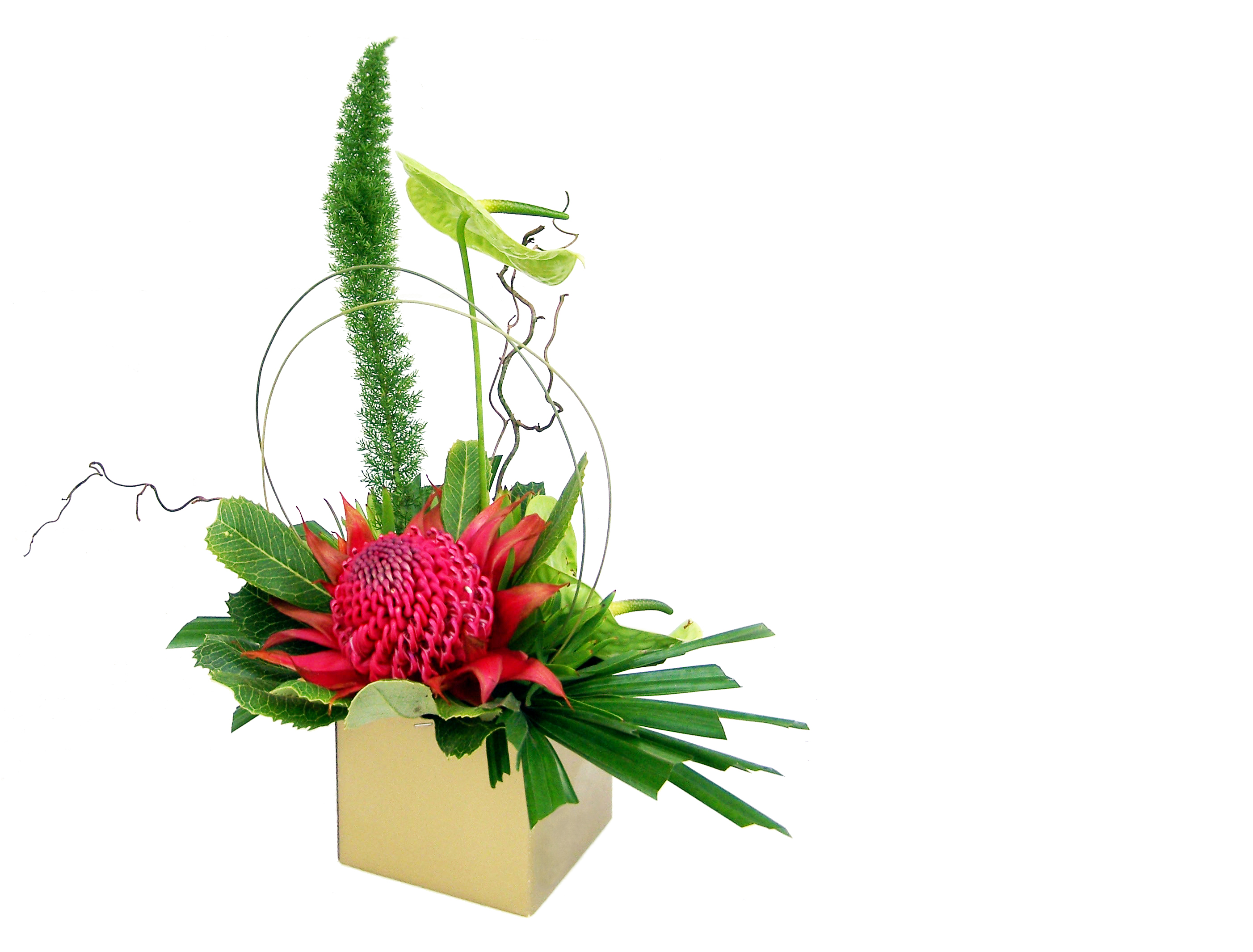 The Best Flowers For His Office Flower Press