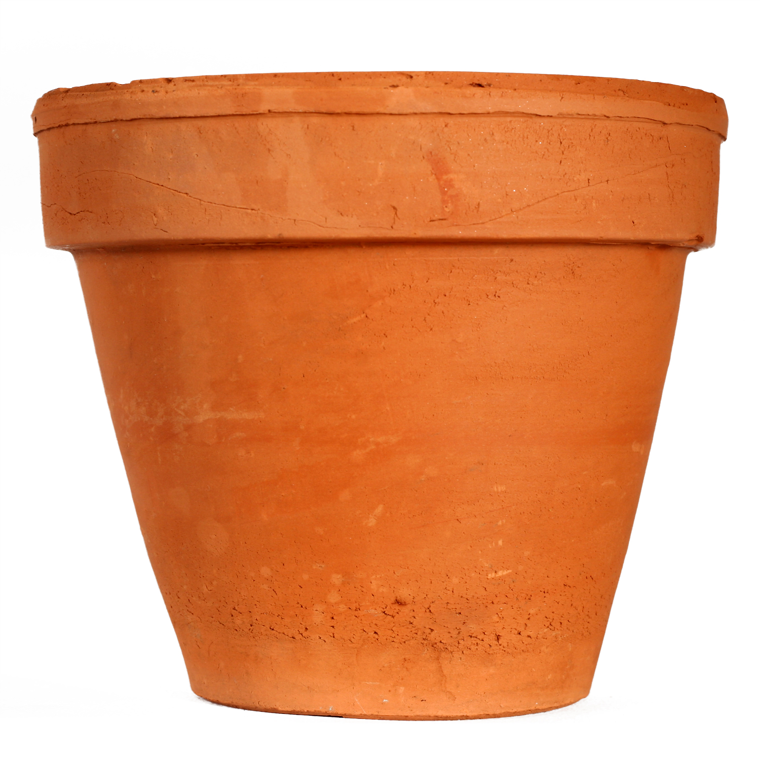 Potted plant improvement tips
