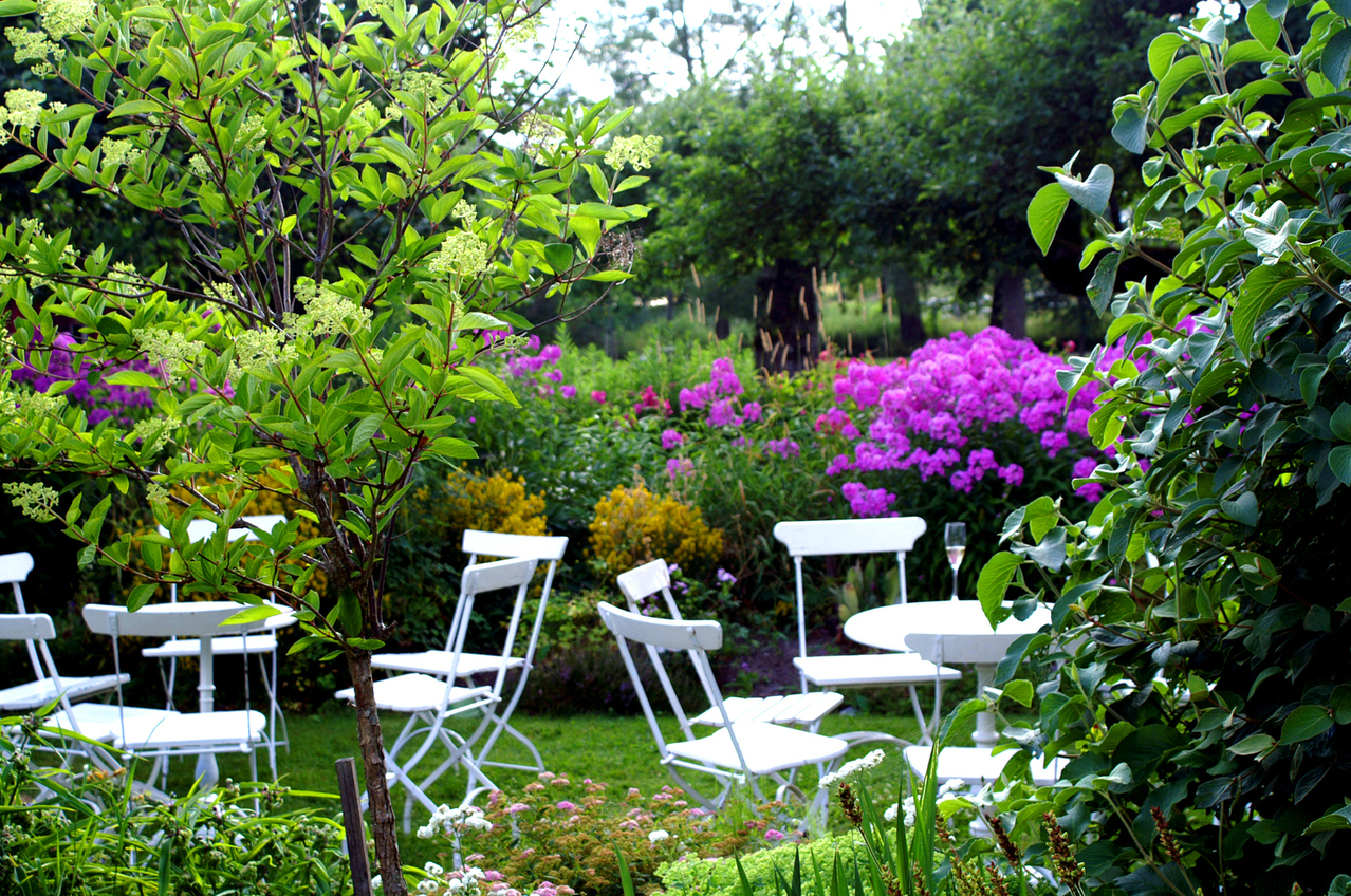 Essential gardening tips for beginners
