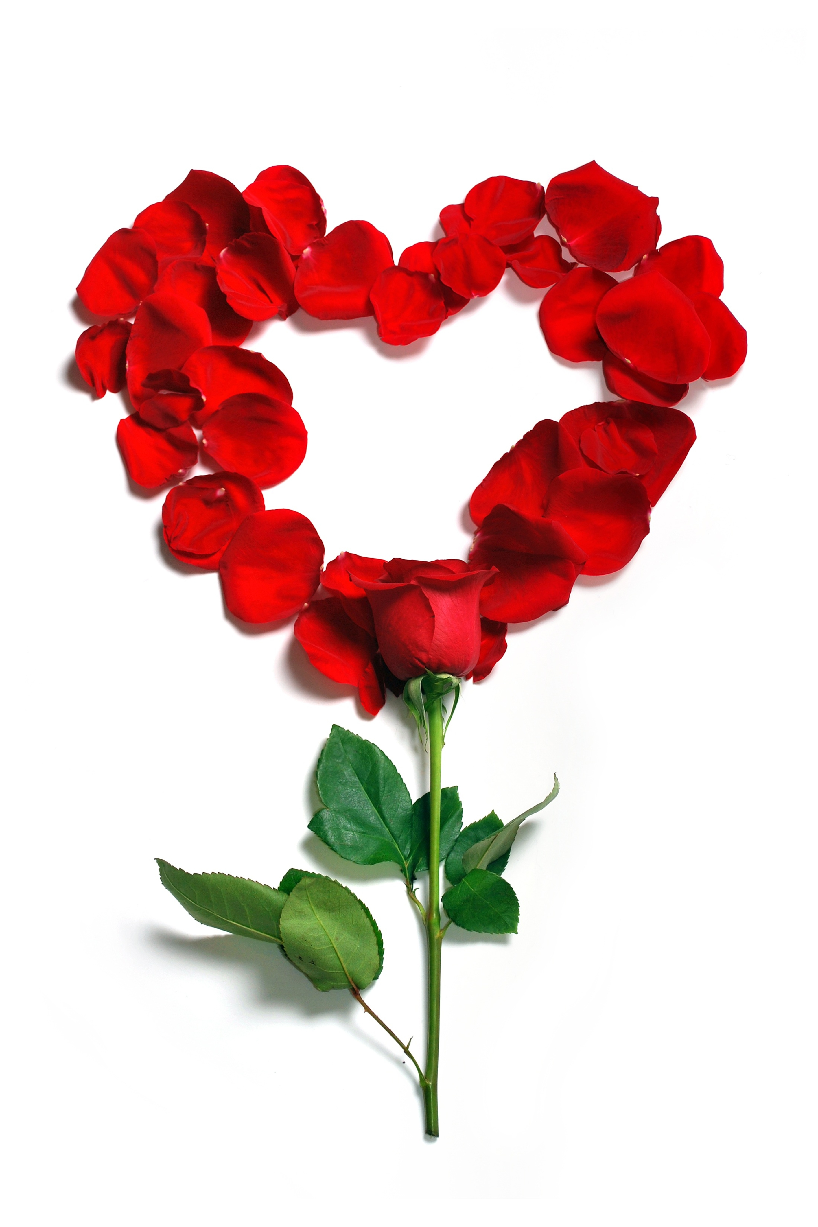 Fun facts you may not know about Valentine's Day