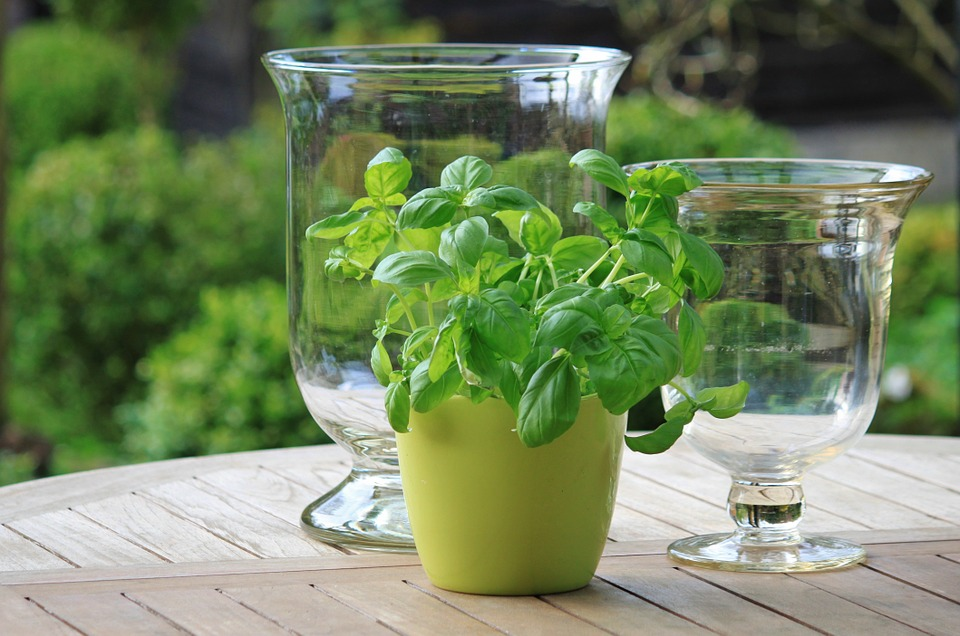 Make your own container herb garden