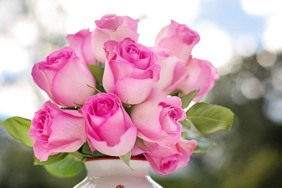 The right roses for your wedding