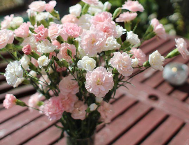 Spring April flowers