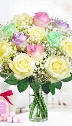 Birthday flowers or plants