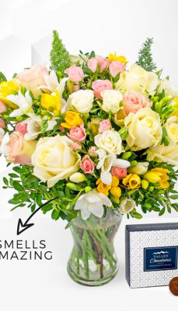 Freesia flower facts